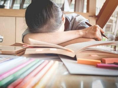 Trước khi quyết định chọn trường Chuyên hay Quốc tế cho con, cha mẹ rất nên tham khảo lời khuyên chuẩn xác này