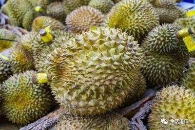 Cách ăn sầu riêng không bị nóng và những người không nên ăn sầu riêng