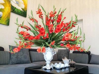 Cách cắm hoa lay ơn đơn giản đẹp lộng lẫy