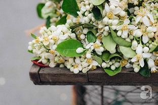 Cứ thấy 4 loài hoa này xuất hiện thì biết ngay tháng 3 đã về rồi