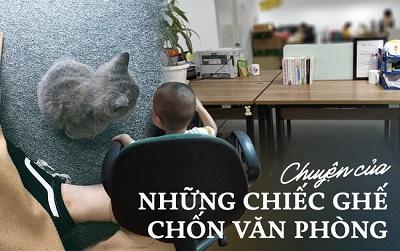 Chuyện ức chế của những chiếc ghế: Ghế là thế giới riêng của chị, phải đâu chỗ em để con chơi, chó mèo ngồi!